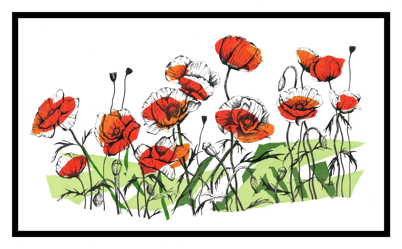 'Poppies - Original Screenprint' by artist Joanna Mcdonough