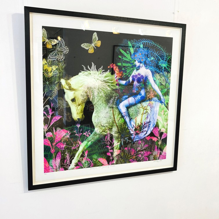 ''BRING ON THE DANCING HORSES' Limited Edition Print 1/20' by artist Ashley Cook